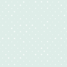 We Are All Stars Breeze Light Green - Cloud 9 Quilters Weight Fabric 44in/45in Per Metre