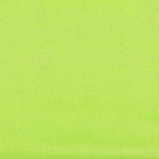 Lime French Terry Fabric